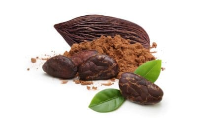 JoJo's Organic Cacao Powder: Chocolate for a New Age and a New You