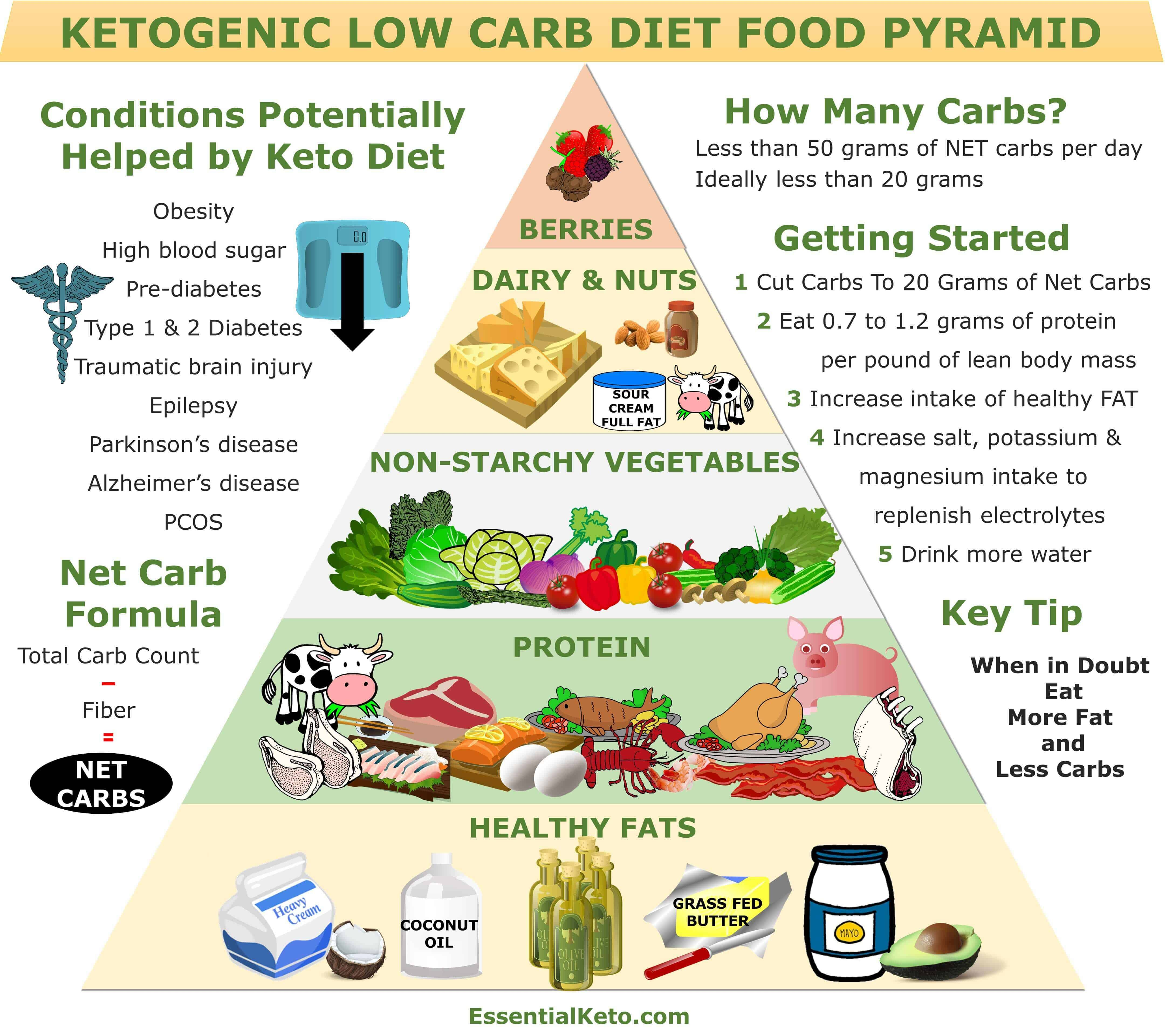Smart image throughout keto food pyramid printable