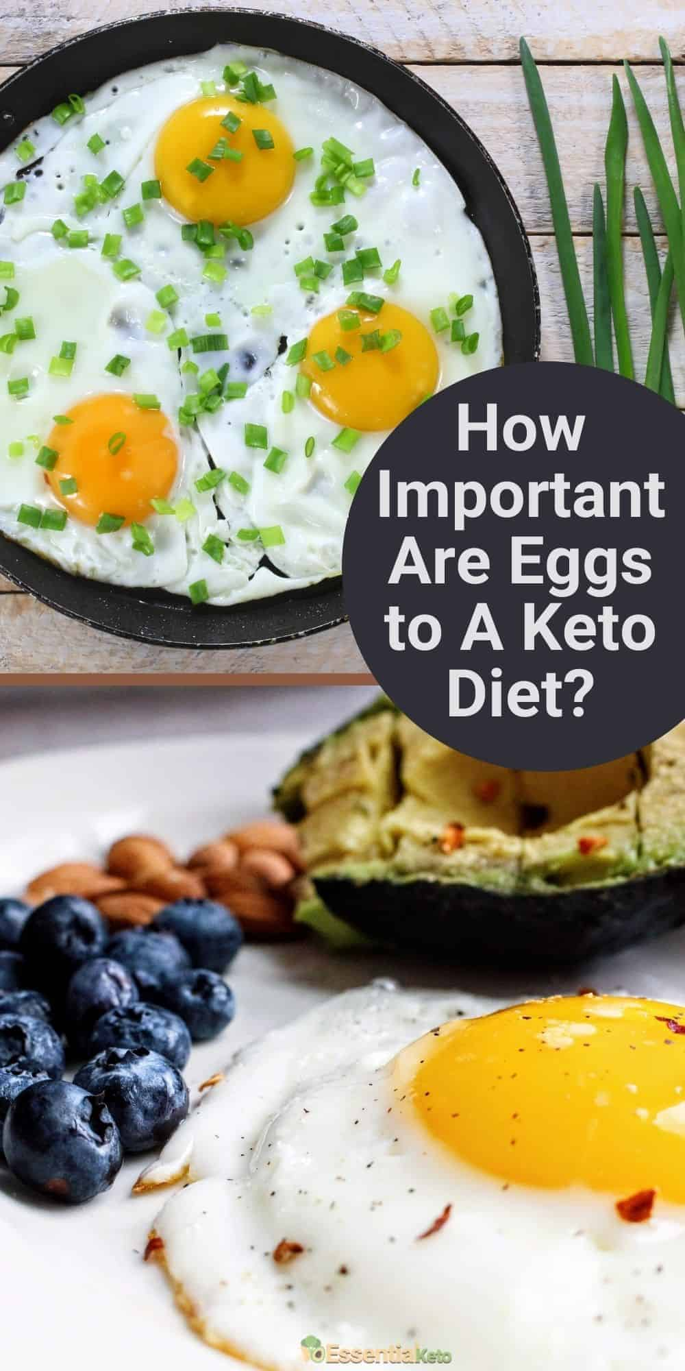 How Important Are Eggs to A Keto Diet